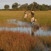 Viajes Botswana