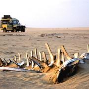 Viaje a Namibia 1