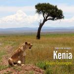 Viaje a Kenia, safari Kenia, que ver en Kenia